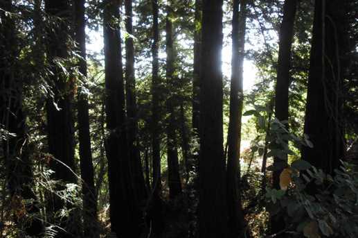 000 Bear Creek - Photo 5