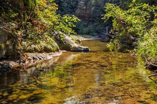 13546 Old Bear Creek Rd - Photo 25