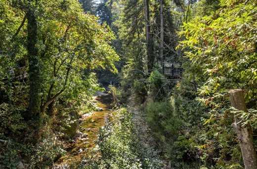 13546 Old Bear Creek Rd - Photo 29