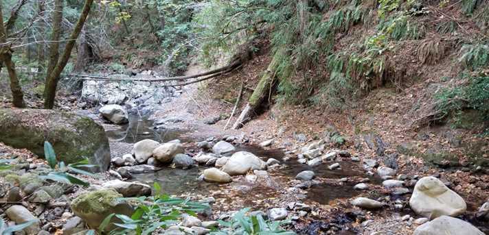 860 Canyon Vista - Photo 9