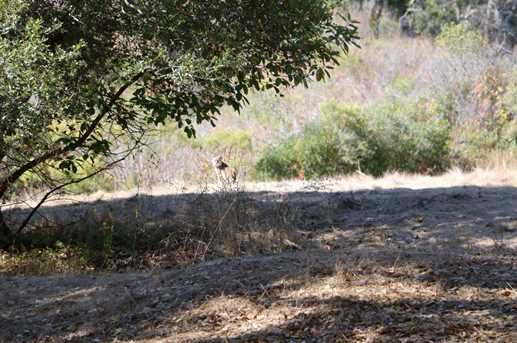 5 Corral Run - Photo 15
