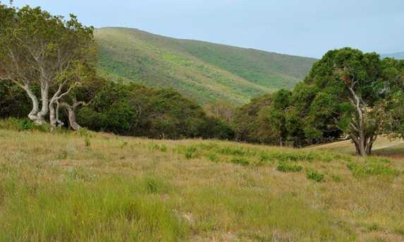 8425 Alta Tierra (Lot 66 Tehama) - Photo 5