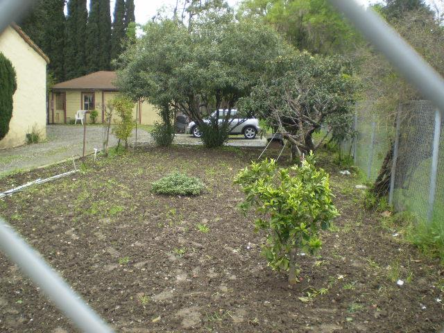 Additional photo for property listing at 967 N Capitol Ave  SAN JOSE, CALIFORNIA 95133