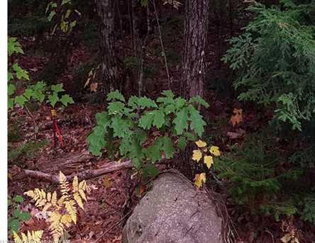 M3 L49-C Bush Road - Photo 4