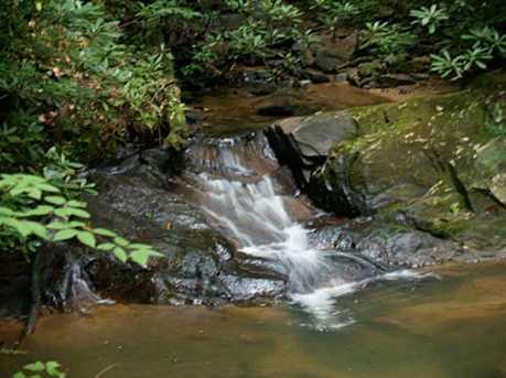Falls Trail #65 - Photo 3