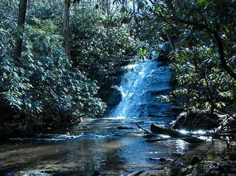 Falls Trail #65 - Photo 1