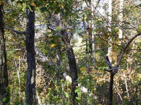 1922 Big Stump Mountain Trail - Photo 5