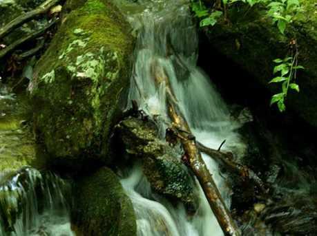 165 Cold Stream - Photo 4