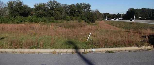 135 Grand Oak Drive - Photo 7