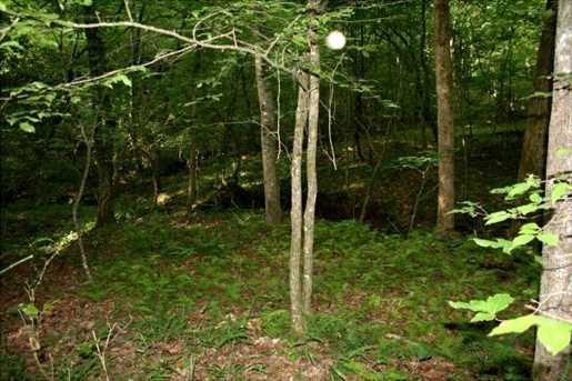0 Off Of Falling Pines Road - Photo 3