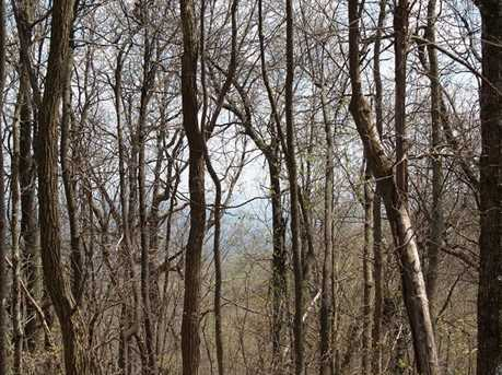 16D Lower Sassafras Mountain Parkway - Photo 5