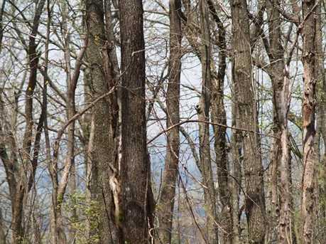 16D Lower Sassafras Mountain Parkway - Photo 1