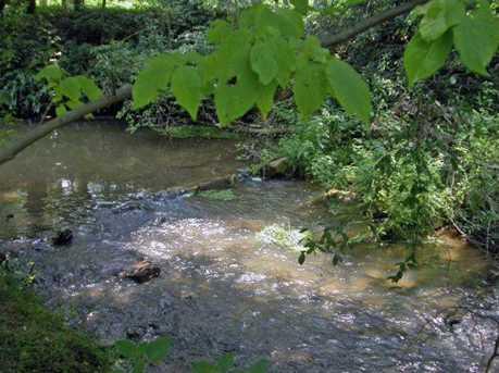 493 Pigeon Creek Drive #27 - Photo 9