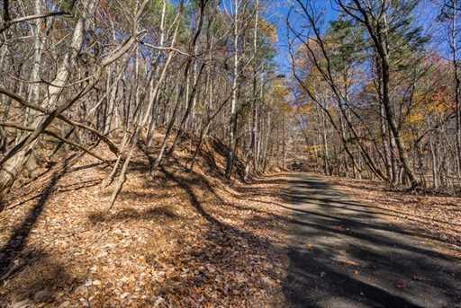 1317 Coachwhip Trail - Photo 19