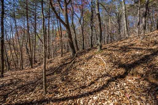 1317 Coachwhip Trail - Photo 7