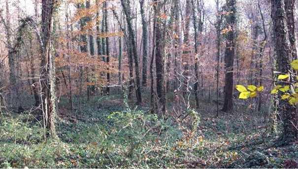 0 Sourwood Trail #10-19 - Photo 3