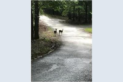 Zeblin Road #422 - Photo 1