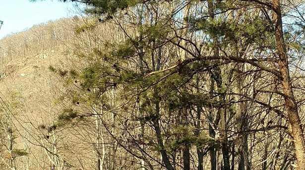 Cedar Mountain Rd - Photo 7