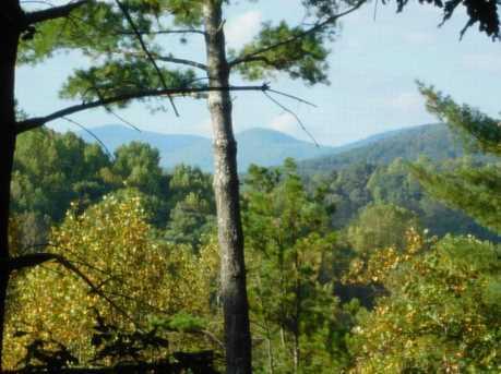 115 Rocktree Overlook - Photo 1
