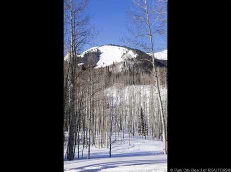249 White Pine Canyon Road - Photo 9
