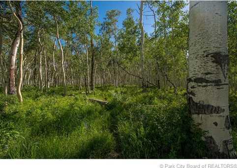11704 E Forest Creek Road - Photo 14