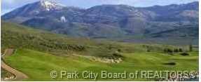 6836 Cody Trail - Photo 3