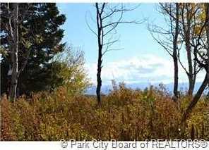 2214 S Aspen Ridge Drive - Photo 5