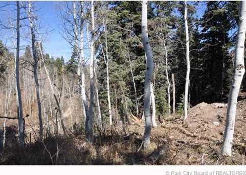 2369 Pine Meadow - Photo 27