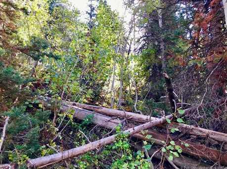 2369 Pine Meadow - Photo 11