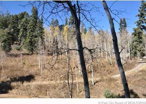 2369 Pine Meadow - Photo 41