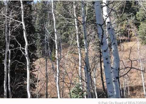 2369 Pine Meadow - Photo 37