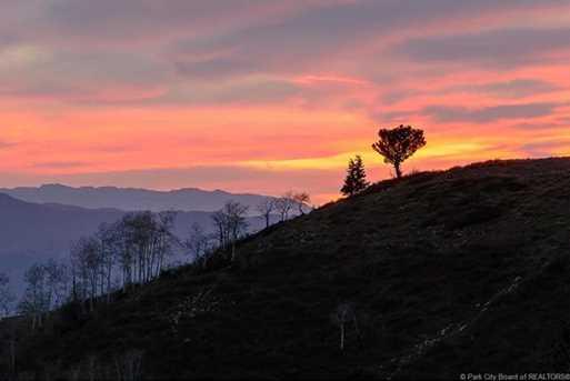 7973 Acres Bear Mountain Ranch - Photo 5