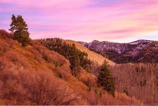 7973 Acres Bear Mountain Ranch - Photo 29