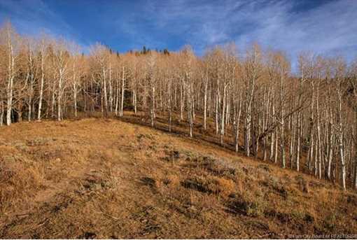 7973 Acres Bear Mountain Ranch - Photo 27