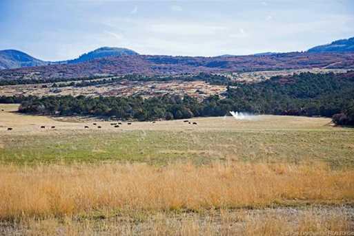 7973 Acres Bear Mountain Ranch - Photo 19