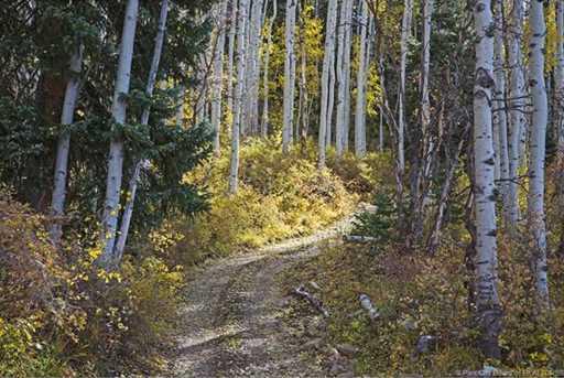 7973 Acres Bear Mountain Ranch - Photo 7