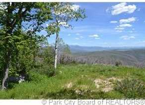 2980 Forest Meadow Road - Photo 1