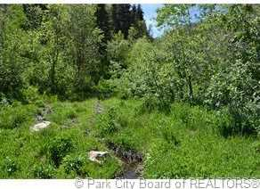 2980 Forest Meadow Road - Photo 5