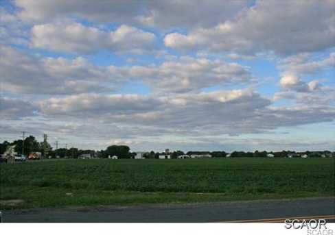 1019 Kings Highway - Photo 11