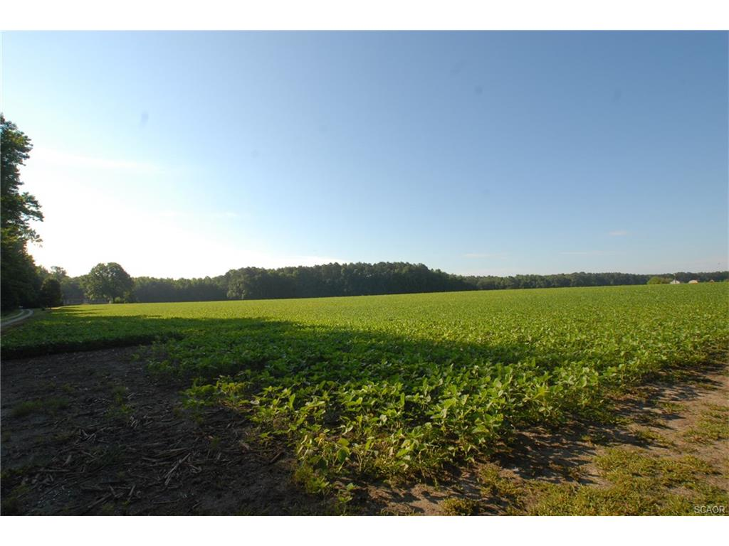 Land for Sale at 0 Hollyville Rd Harbeson, Delaware 19951 United States