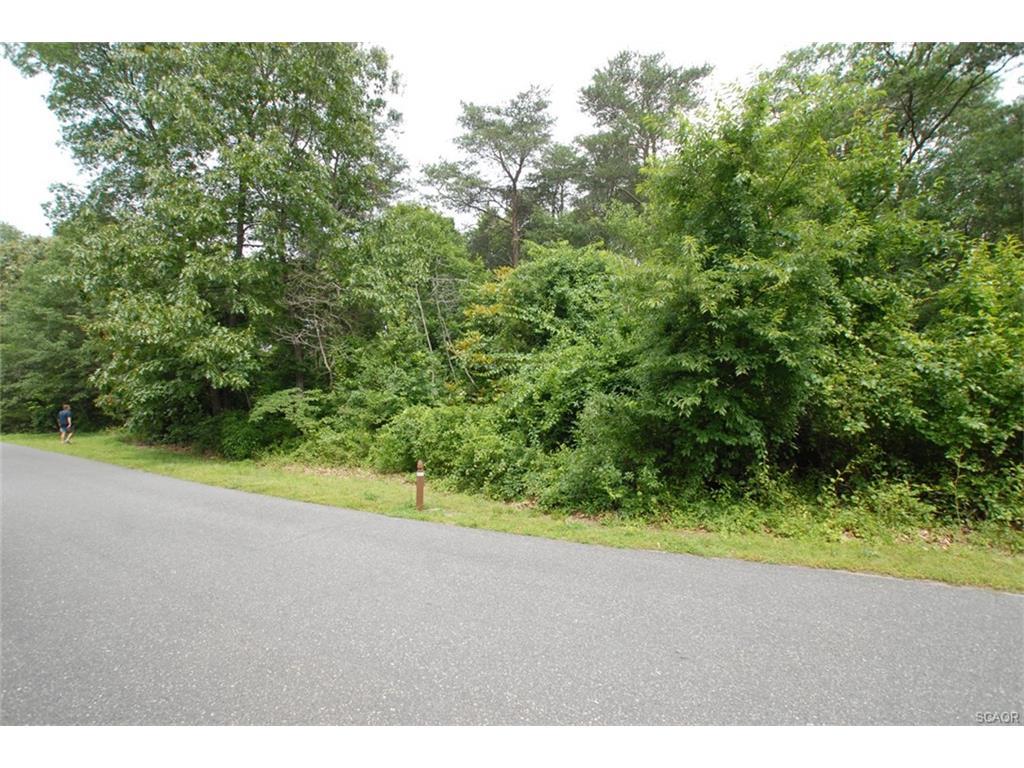 Land for Sale at 81 Greenleaf Lane Seaford, Delaware 19973 United States