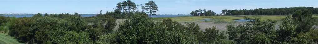 38328 Ocean Vista Dr #1093 - Photo 19