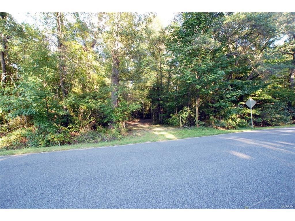 Land for Sale at 0 W Brittingham Delmar, Delaware 19940 United States