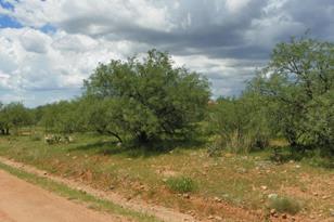 157 Camino Embarcadero - Photo 1