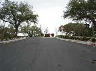 1116 Cove Pointe Dr - Photo 1