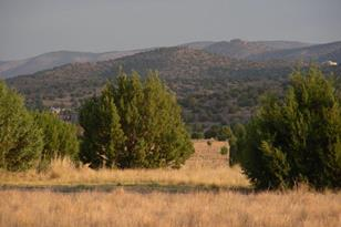 24980 Verde Highlands - Photo 1