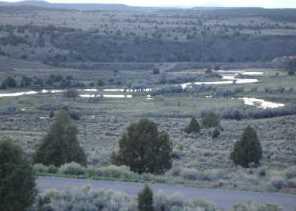 1790 E Paunsaugunt Cliffs Dr - Photo 9