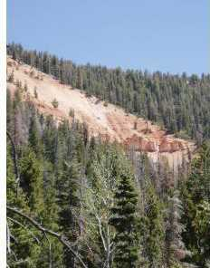 5415 W Deer Trail Nle 5-7 - Photo 1