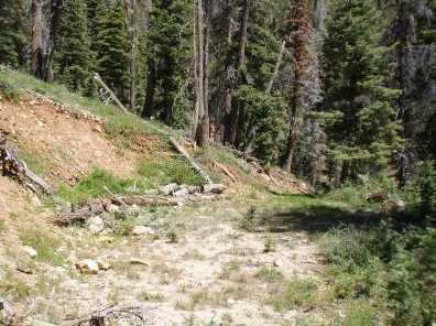 5415 W Deer Trail Nle 5-7 - Photo 5