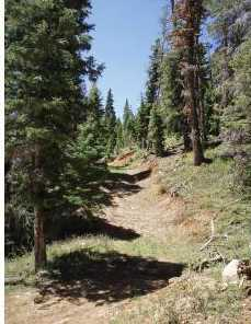 5415 W Deer Trail Nle 5-7 - Photo 3